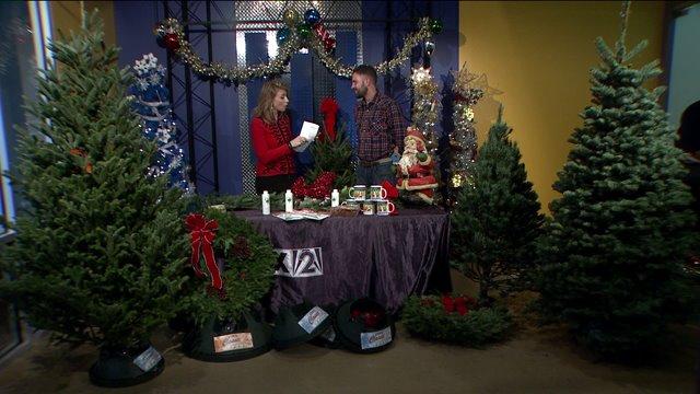Keep Your Christmas Tree Fresh This Season Fox 2