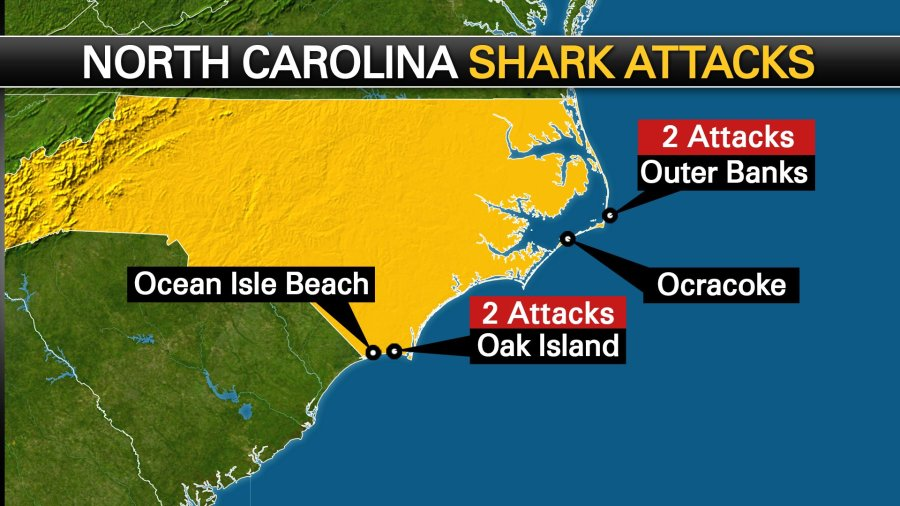 Drought May Be Causing Increase In Shark Attacks Off N C S C Fox 2