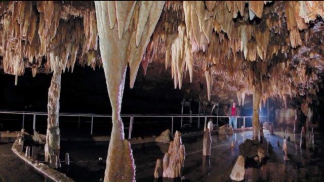 Meramec Cave Halloween Event 2020 Owner of Meramec Caverns hopes to reopen soon   FOX 2