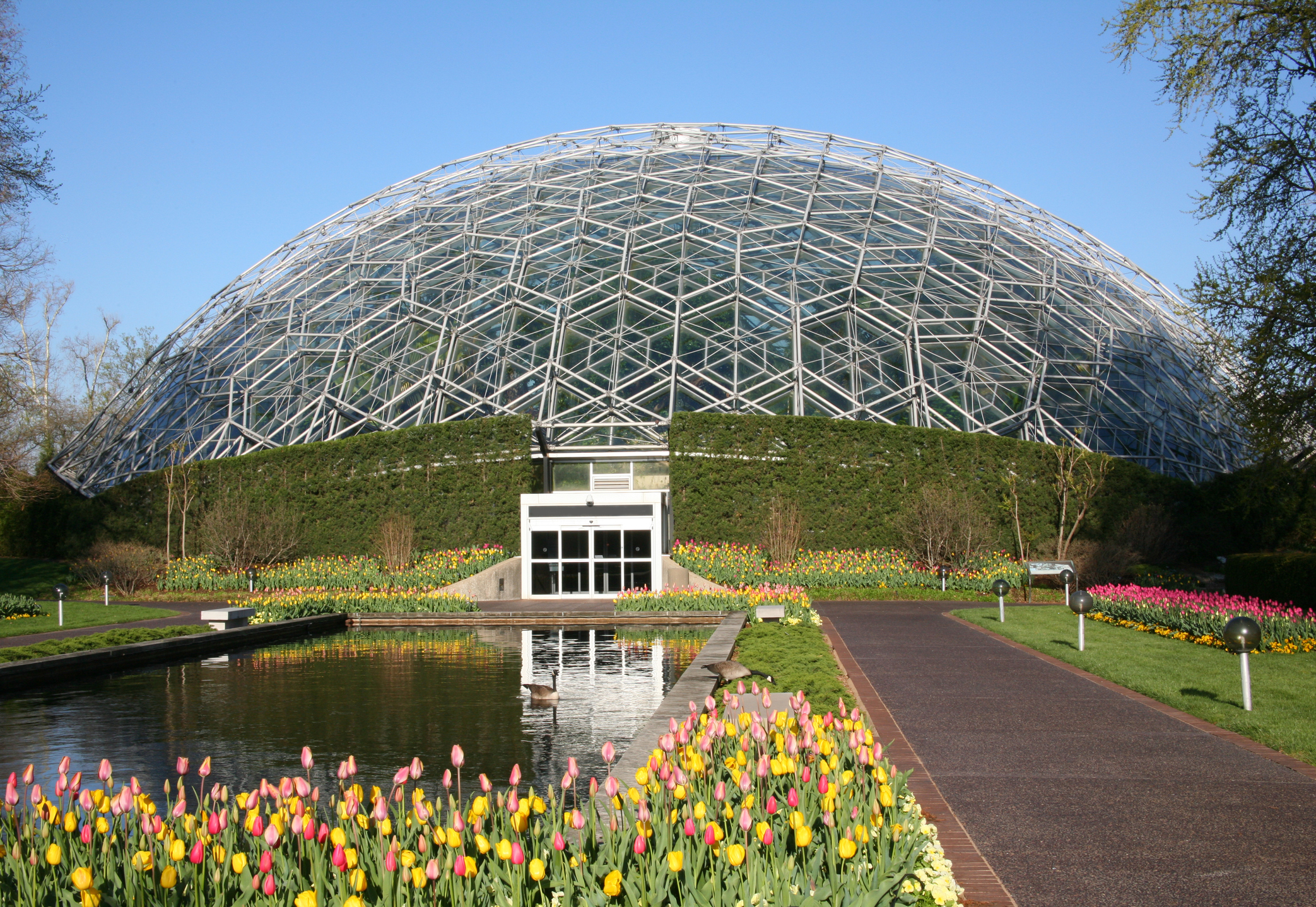 Missouri Botanical Garden Reopening In June With Reservations Required Fox 2