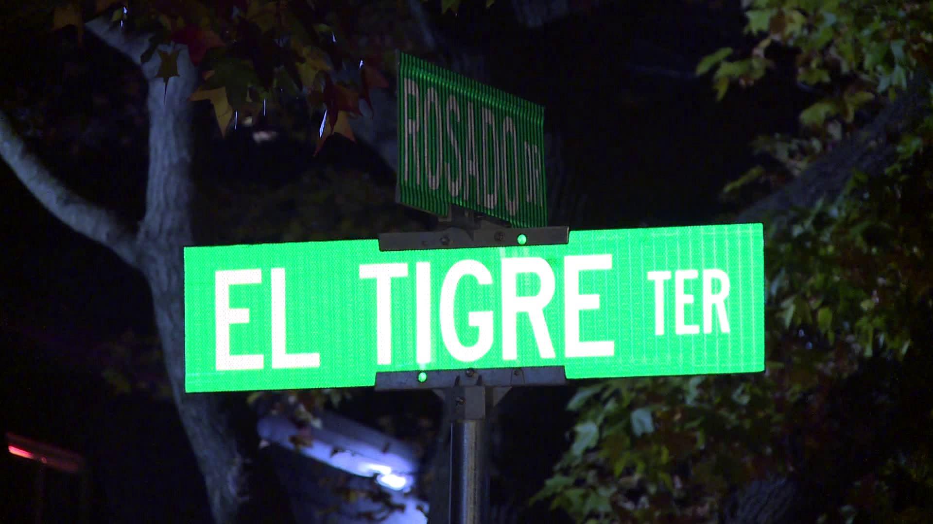 Anal Girl El Tigre