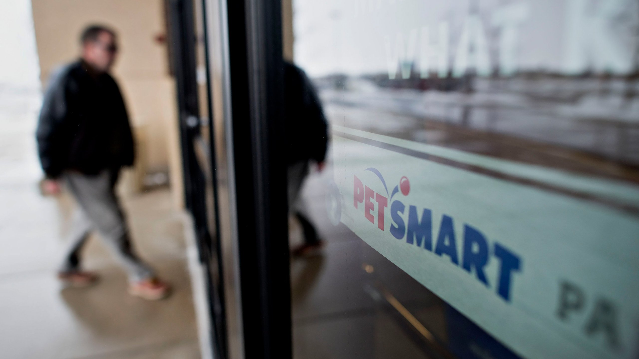 Petsmart Christmas Hours 2020 Owner says bulldog was crushed to death at PetSmart during