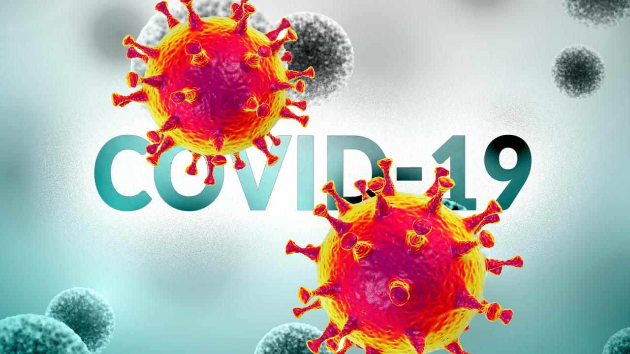 St. Louis County reports 38 neue Fälle von COVID-19, Belege für Gemeinschaft übertragung