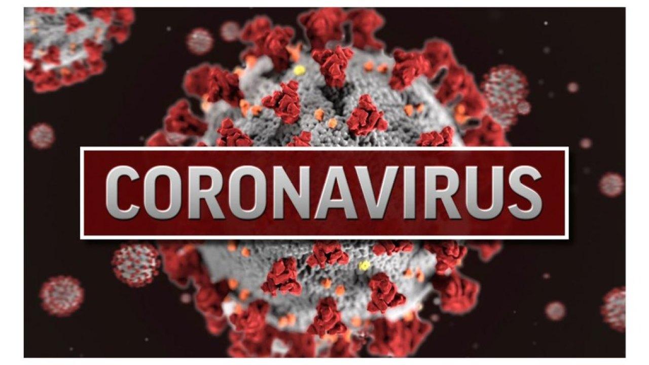 Weltweit coronavirus-Fälle Finsternisse 1 Mio.